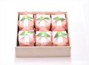 tosenka 6 pieces box